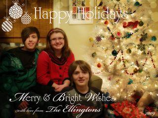 2009 Perfection Christmas Card copy
