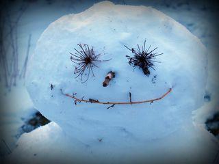 Nicks snowman face 09